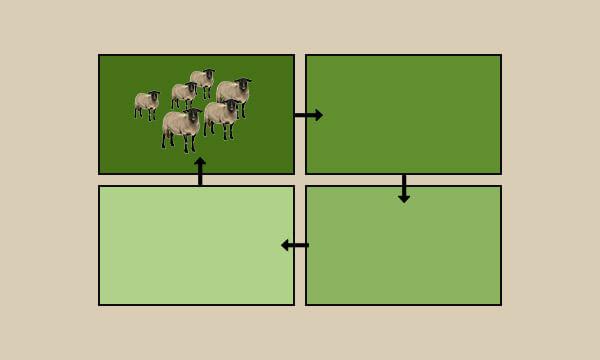 Exemplo para Pastagem Rotativa